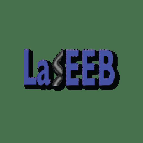 laseeb_logo