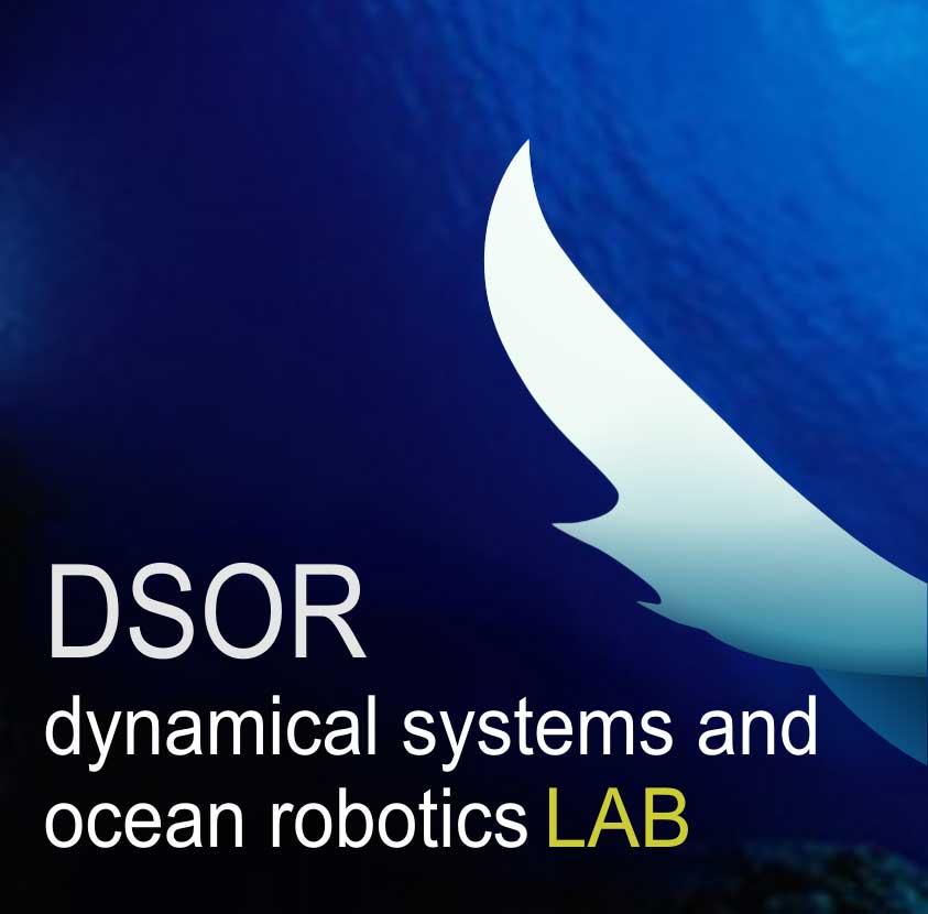 DSOR_logo_v05a